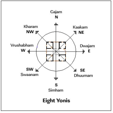 eight yonis